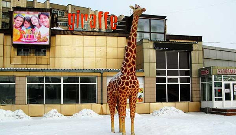 Жираф ночной клуб телефон ночной клуб в космосе москва